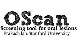 Oscan business model | How does Oscan make money?